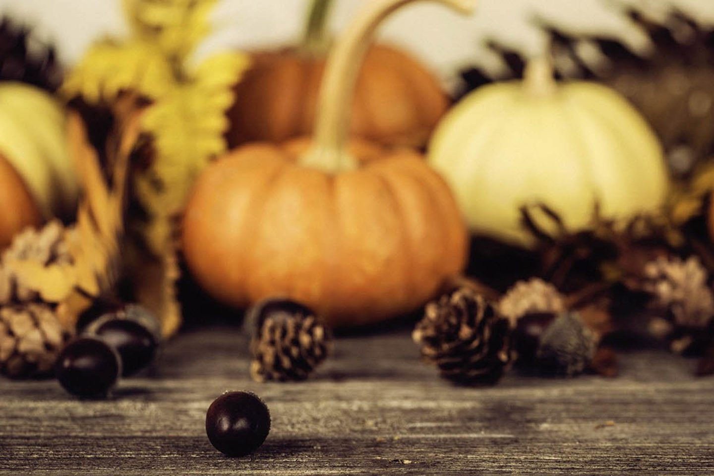 thanksgivingg